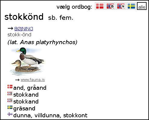 Словарь исландский